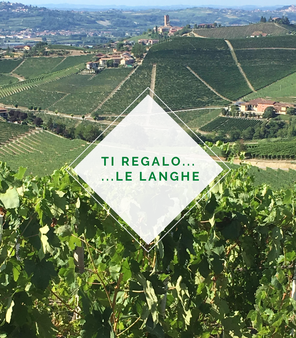 A PRESENT FOR YOU...THE LANGHE